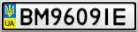 Номерной знак - BM9609IE
