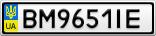 Номерной знак - BM9651IE