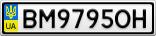 Номерной знак - BM9795OH