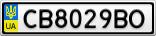 Номерной знак - CB8029BO