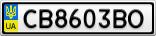 Номерной знак - CB8603BO