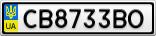 Номерной знак - CB8733BO