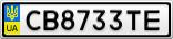 Номерной знак - CB8733TE