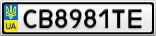 Номерной знак - CB8981TE
